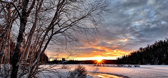 winter-landscape-2995987_640